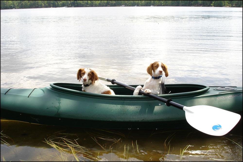 blog_boat3