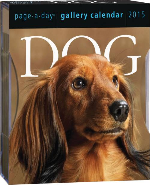 Dog Gallery Calendar Page-A-Day