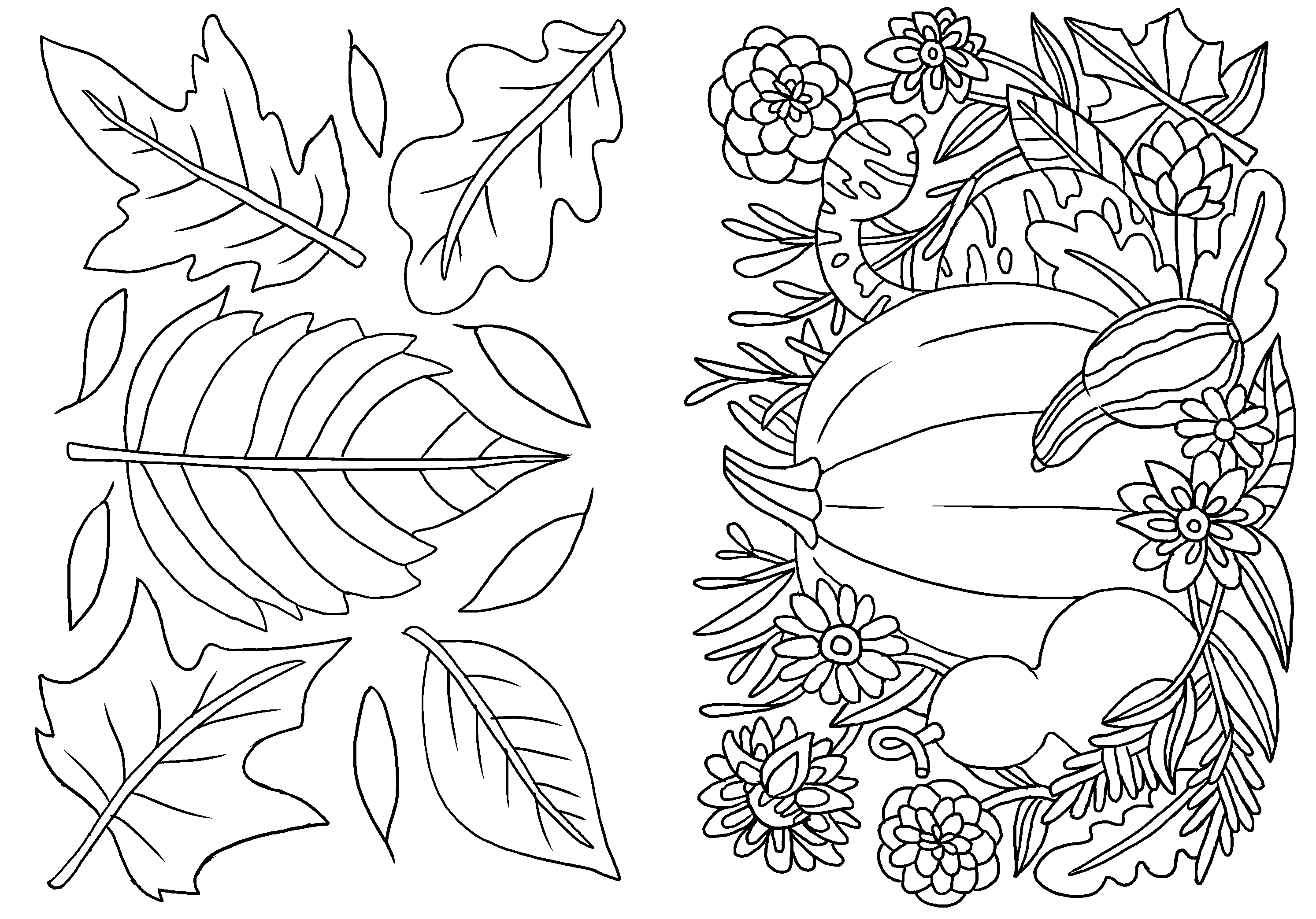 Color Your Own Autumn Greeting Card